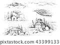 Rural Scene with Houses, Vineyard Trees Sketch 43399133
