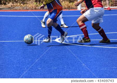 Futsal 43409743