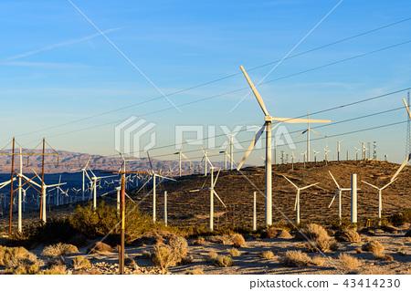 美國棕櫚泉的風車,在晨曦中反映出來 43414230