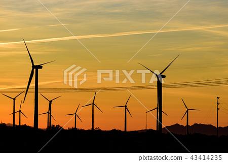 美國棕櫚泉的風車,在晨曦中反映出來 43414235