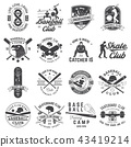 Set of baseball and skateboard club badge. Vector illustration. Concept for shirt or logo, print 43419214