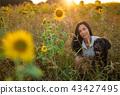 flower dog animal 43427495