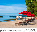 Umbrella and chair on the tropical beach sea and ocean 43429593