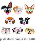 ชุดลูกสุนัขน่ารักใบหน้าแว่นตา 43433486