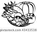 秋天 秋 食品 43433538