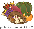 秋季食材3 43433775