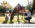 A senior couple crouching and a horse grazing by a stable. 43439024