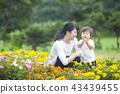 gardening, baby boy, boy 43439455