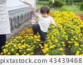 gardening, baby boy, boy 43439468