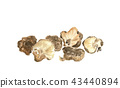 Dried shiitake mushrooms 43440894