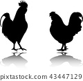 rooster and chicken silhouettes 43447129