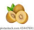 whole and half yellow kiwi with green leaf isolate 43447691