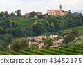 landscape, vineyard, hill 43452175