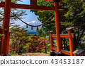 red tori gate with Mount Fuji in the background 43453187