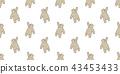 หมี,ไร้รอยต่อ,หมีขั้วโลก 43453433