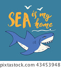 Cute Shark hand drawn sketch, T-shirt print vector 43453948