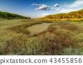 Panorama of the Osala River 43455856