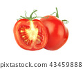 Tomatoes. Whole and a half isolated on white 43459888