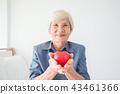 woman, senior, portrait 43461366