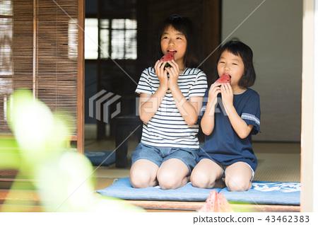 吃烏賊的小學女孩在老房子結束時 43462383
