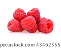 Raspberry on white background 43462555