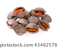cockles seafood on white background 43462576