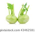 Fresh kohlrabi with green leaves on white  43462581