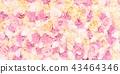 艳绘绘:玫瑰背景 43464346