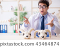 Funny crazy professor studying animal skeletons 43464874