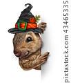 Halloween Squirrel Banner 43465335