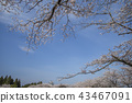 ประเทศญี่ปุ่น,มิยะซาคิ,ท้องฟ้าเป็นสีฟ้า 43467091