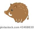 野豬 43468630