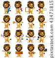 Set of lion cartoon character 43471815