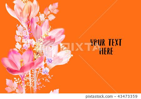 優雅的水彩水仙花花卉 43473359