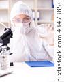 Biotechnology scientist chemist working in lab 43473850