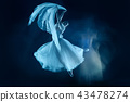 photo as art - a sensual and emotional dance of beautiful ballerina through the veil 43478274