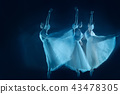 photo as art - a sensual and emotional dance of beautiful ballerina through the veil 43478305