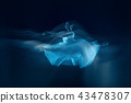 photo as art - a sensual and emotional dance of beautiful ballerina through the veil 43478307