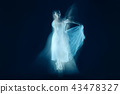 photo as art - a sensual and emotional dance of beautiful ballerina through the veil 43478327