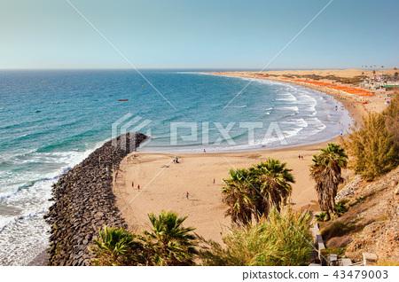 Playa del Ingles Gran Canaria 43479003
