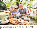 Family celebration or a garden party outside in the backyard. 43482913
