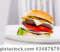 Hamburger is tasty dish on the plate 43487879