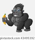 Cartoon funny gorilla holding banana 43495392