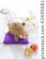 멧돼지와 마리 43495681
