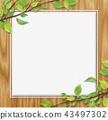 신록 잎 공백 오크 색상 우드 43497302