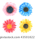 Flowers watercolor collection on white background  43501622