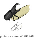 Beetles rhinoceros on sugarcane vector  43501740
