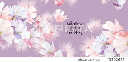 優雅的玫瑰花花卉 43502633