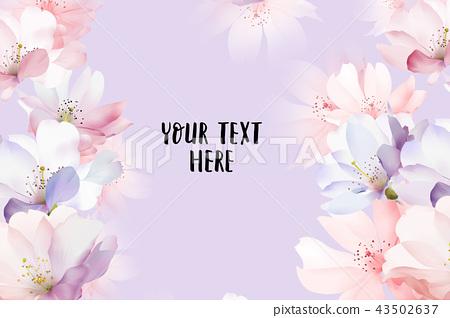 優雅的玫瑰花花卉 43502637