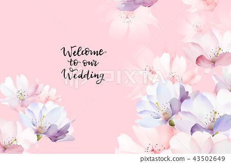 優雅的玫瑰花花卉 43502649